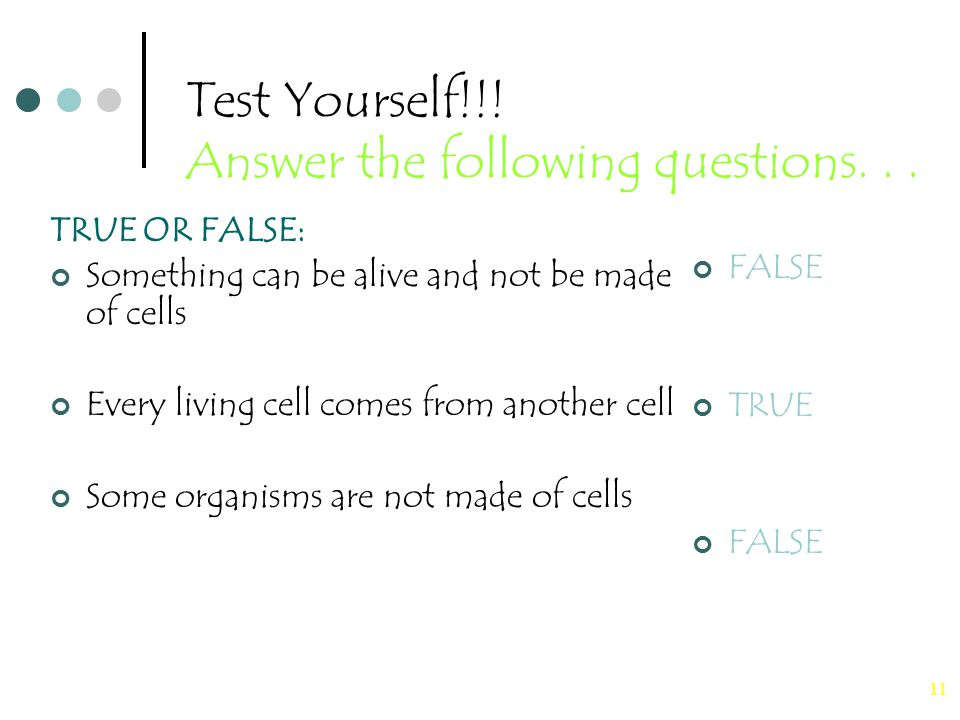 11 Test Yourself!!. Answer the following questions...