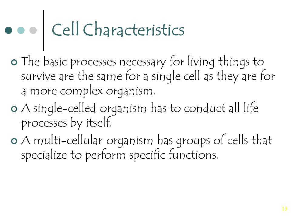 13 Cell Characteristics The basic processes necessary for living things to survive are the same for a single cell as they are for a more complex organism.