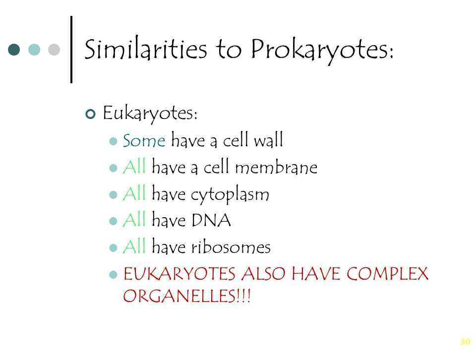 30 Similarities to Prokaryotes: Eukaryotes: Some have a cell wall All have a cell membrane All have cytoplasm All have DNA All have ribosomes EUKARYOTES ALSO HAVE COMPLEX ORGANELLES!!!