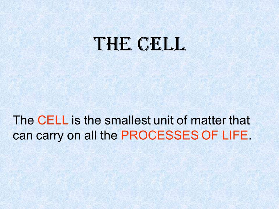 Learning Check All cells have a cell membrane.What are its 3 functions.