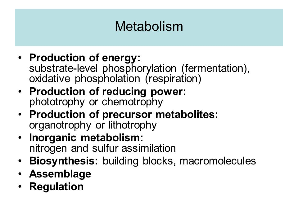 Metabolism Production of energy: substrate-level phosphorylation (fermentation), oxidative phospholation (respiration) Production of reducing power: phototrophy or chemotrophy Production of precursor metabolites: organotrophy or lithotrophy Inorganic metabolism: nitrogen and sulfur assimilation Biosynthesis: building blocks, macromolecules Assemblage Regulation