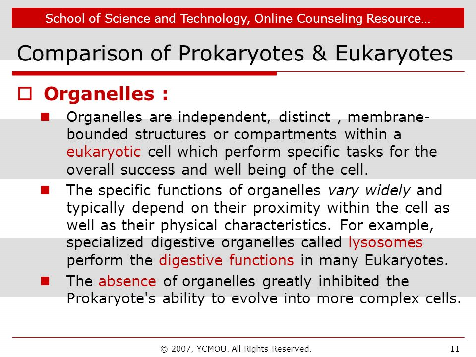 School of Science and Technology, Online Counseling Resource… Comparison of Prokaryotes & Eukaryotes  Organelles : Organelles are independent, distinct, membrane- bounded structures or compartments within a eukaryotic cell which perform specific tasks for the overall success and well being of the cell.