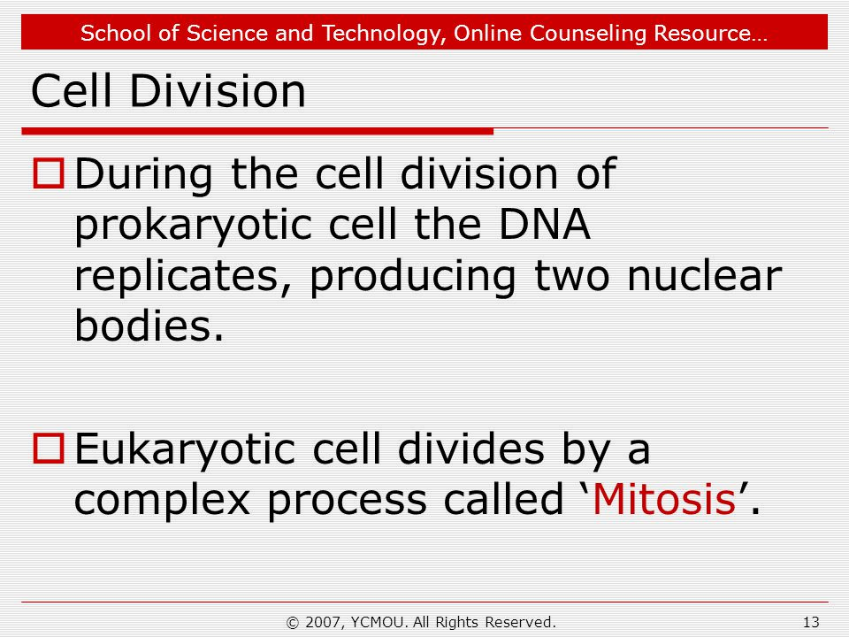 School of Science and Technology, Online Counseling Resource… Cell Division  During the cell division of prokaryotic cell the DNA replicates, producing two nuclear bodies.