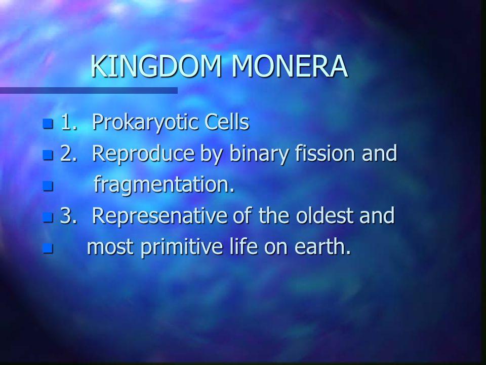 KINGDOM MONERA n Division n Division Cyanophyta Schizophyta n Viruses n Rickettsia