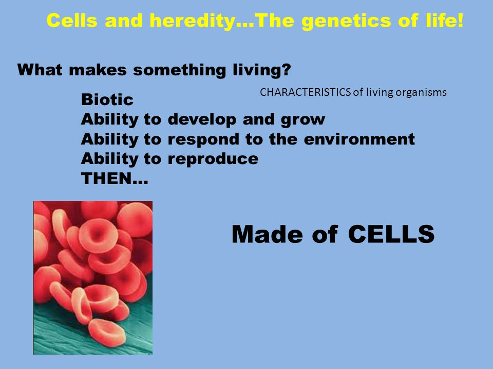Cells and heredity…The genetics of life.What makes something living.