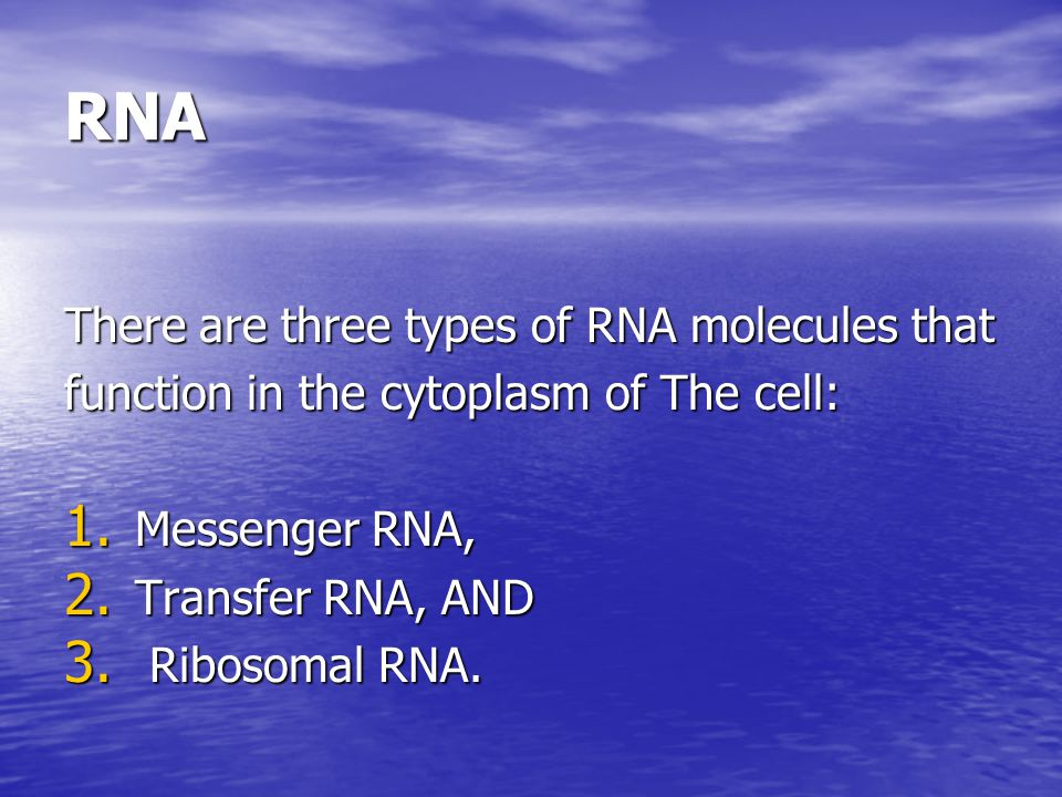 RNA It is a linear molecule similar to DNA except that it is single stranded and contains ribose instead of deoxyribose and Uracil in place of thymine.