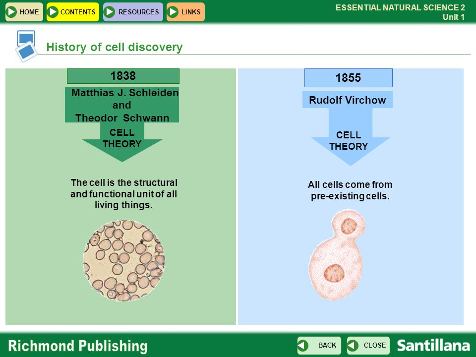 ESSENTIAL NATURAL SCIENCE 2 Unit 1 HOMECONTENTS RESOURCES CLOSE BACK LINKS History of cell discovery 1838 Matthias J. Schleiden and Theodor Schwann CE