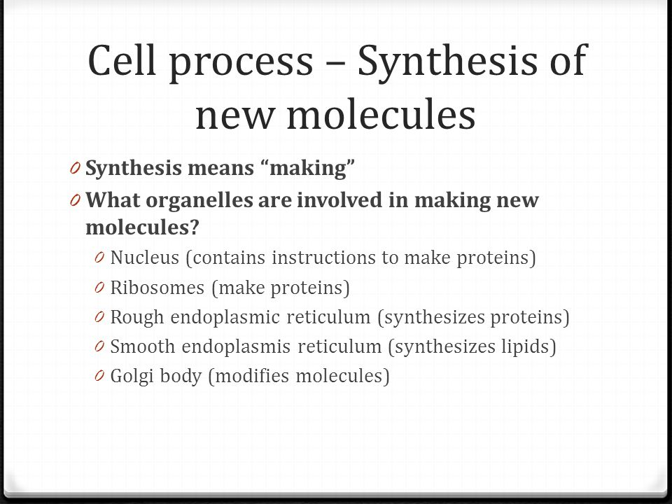 "Cell process – Synthesis of new molecules 0 Synthesis means ""making"" 0 What organelles are involved in making new molecules? 0 Nucleus (contains instr"
