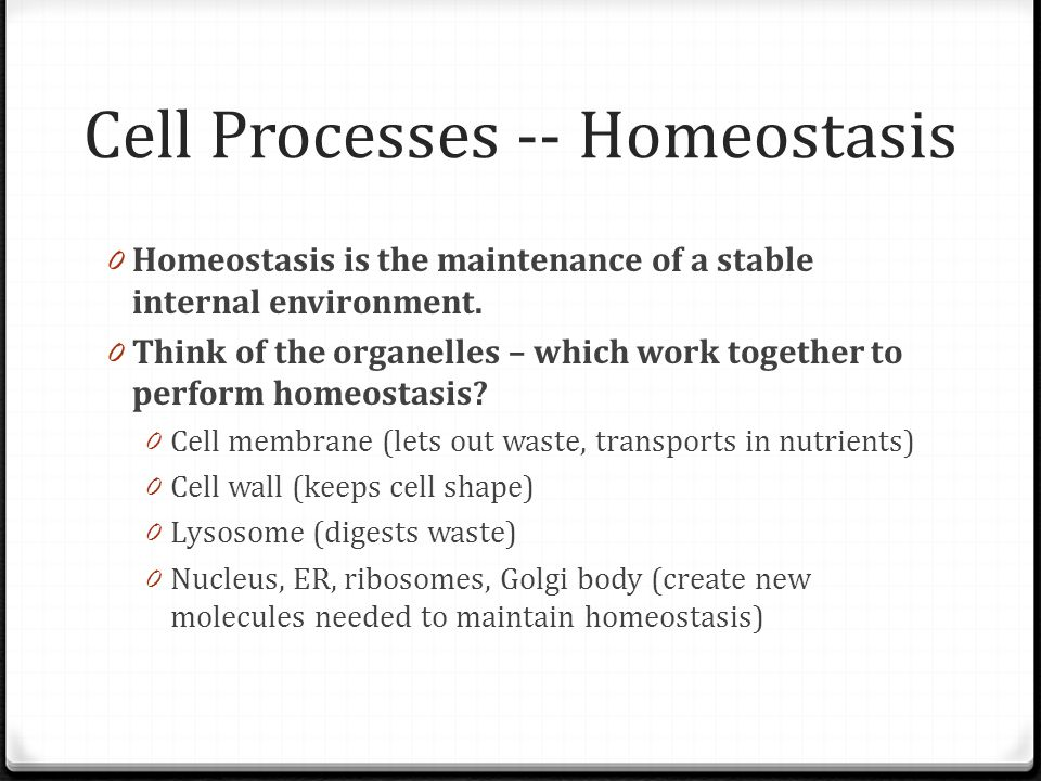 Cell Processes -- Homeostasis 0 Homeostasis is the maintenance of a stable internal environment. 0 Think of the organelles – which work together to pe