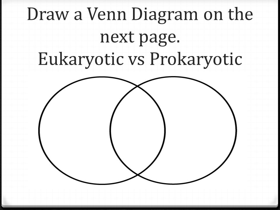 Draw a Venn Diagram on the next page. Eukaryotic vs Prokaryotic