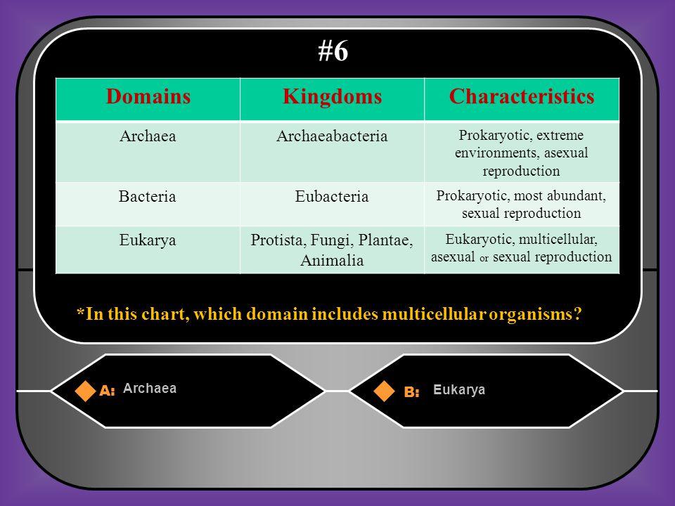 A. Kingdoms