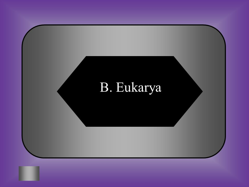 A: B: Archaea Eukarya DomainsKingdomsCharacteristics ArchaeaArchaeabacteria Prokaryotic, extreme environments, asexual reproduction BacteriaEubacteria