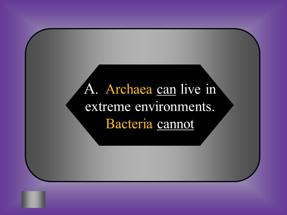 A: B: Archaea can live in extreme environments. Bacteria cannot Archaea is Prokaryotic and bacteria is Eukaryotic DomainsKingdomsCharacteristics Archa