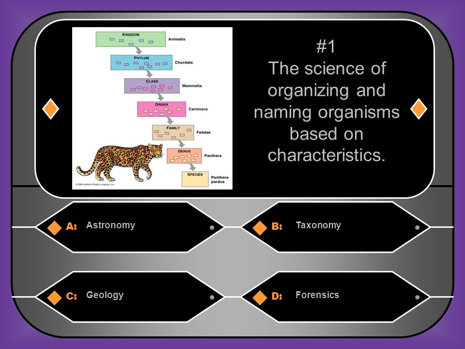 A:B: AstronomyTaxonomy C:D: GeologyForensics #1 The science of organizing and naming organisms based on characteristics.