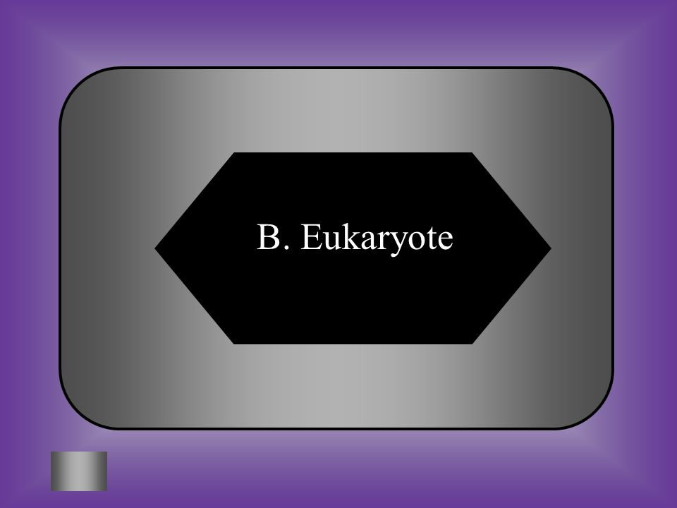 A:B: Prokaryote Eukarote C:D: Animaia None of these #11 Cells with a nucleus, cell membrane, and organelles. *This includes organisms in the Eukarya d