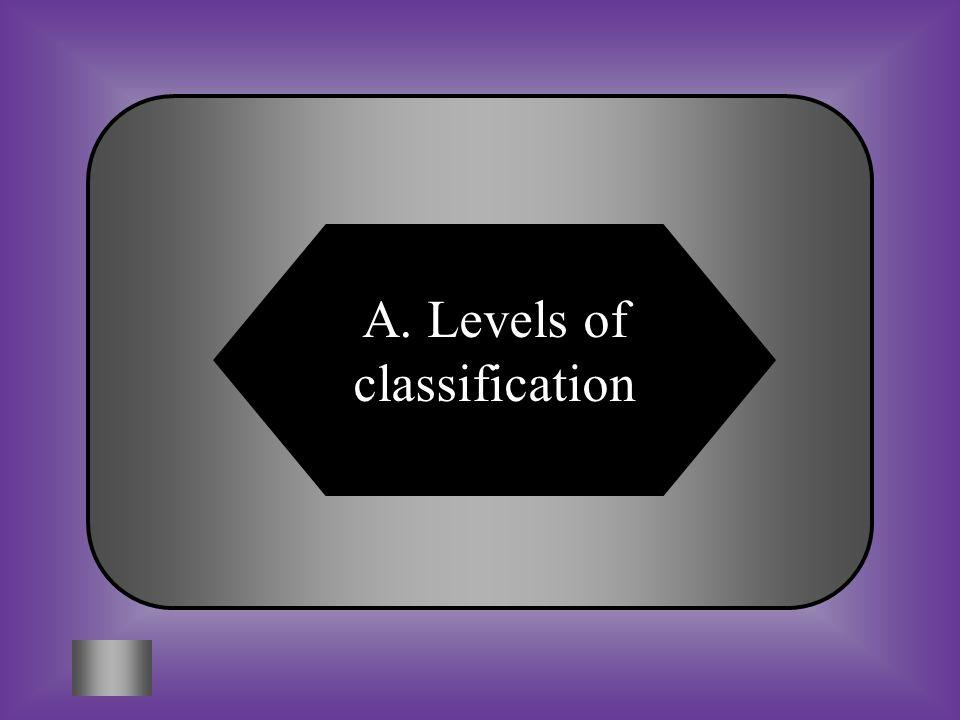 A. Levels of classification