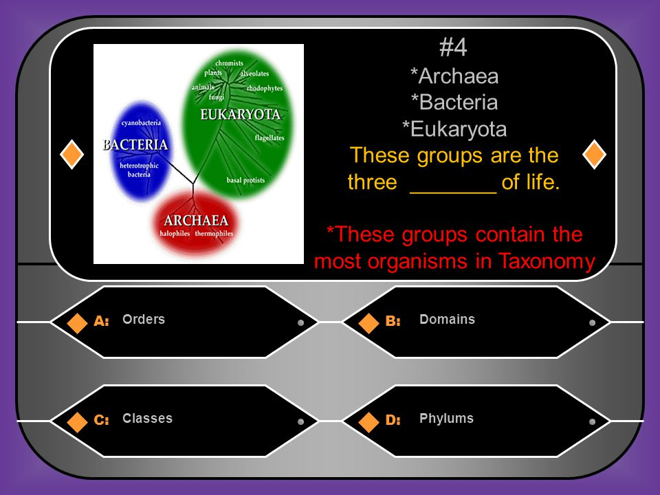 A:B: Cell type Ability to make food C:D: Number of cells in their body All of these #9 How are the 6 Kingdoms grouped.