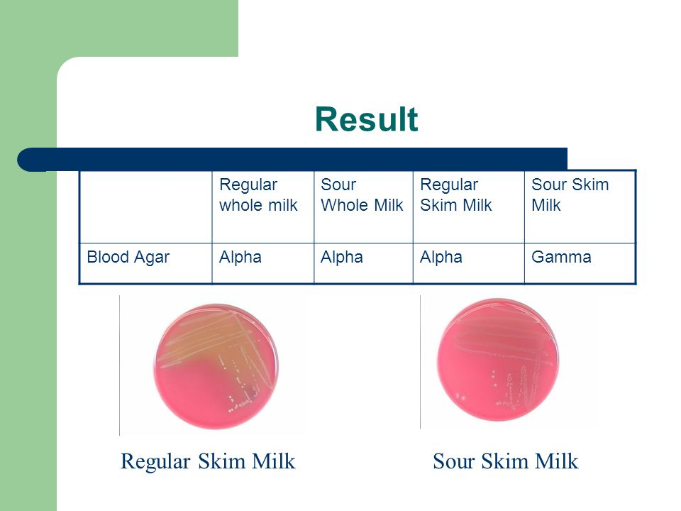 Result Regular whole milk Sour Whole Milk Regular Skim Milk Sour Skim Milk Blood AgarAlpha Gamma Regular Skim MilkSour Skim Milk