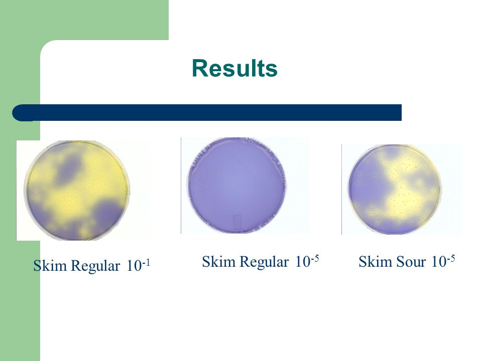 Results Skim Regular 10 -1 Skim Regular 10 -5 Skim Sour 10 -5