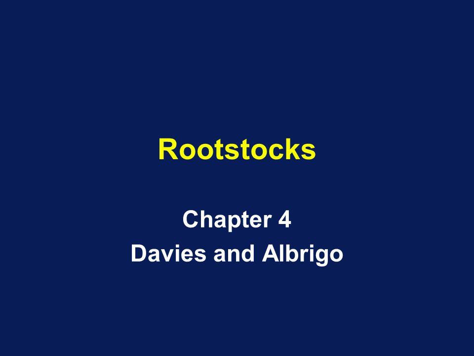 Rootstocks Chapter 4 Davies and Albrigo