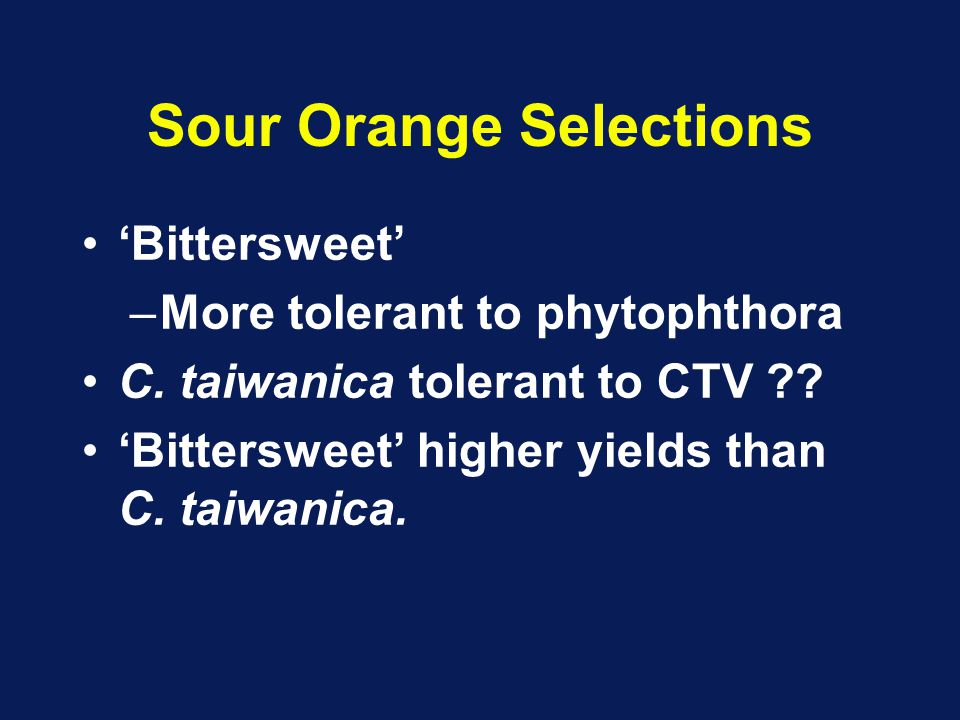 Sour Orange Selections 'Bittersweet' –More tolerant to phytophthora C. taiwanica tolerant to CTV ?? 'Bittersweet' higher yields than C. taiwanica.