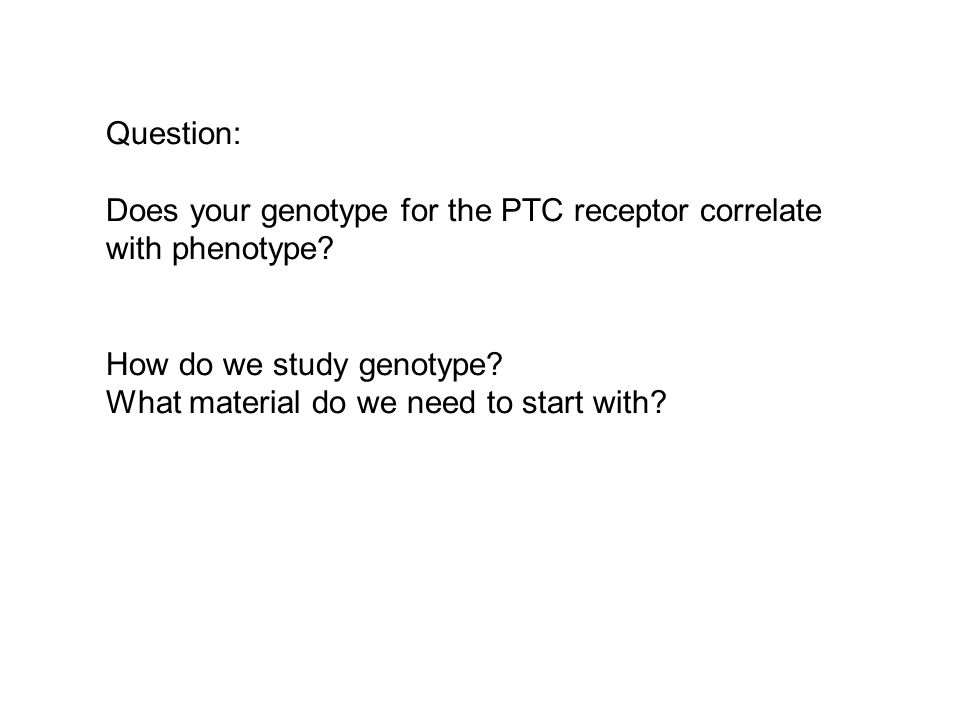 Question: Does your genotype for the PTC receptor correlate with phenotype.