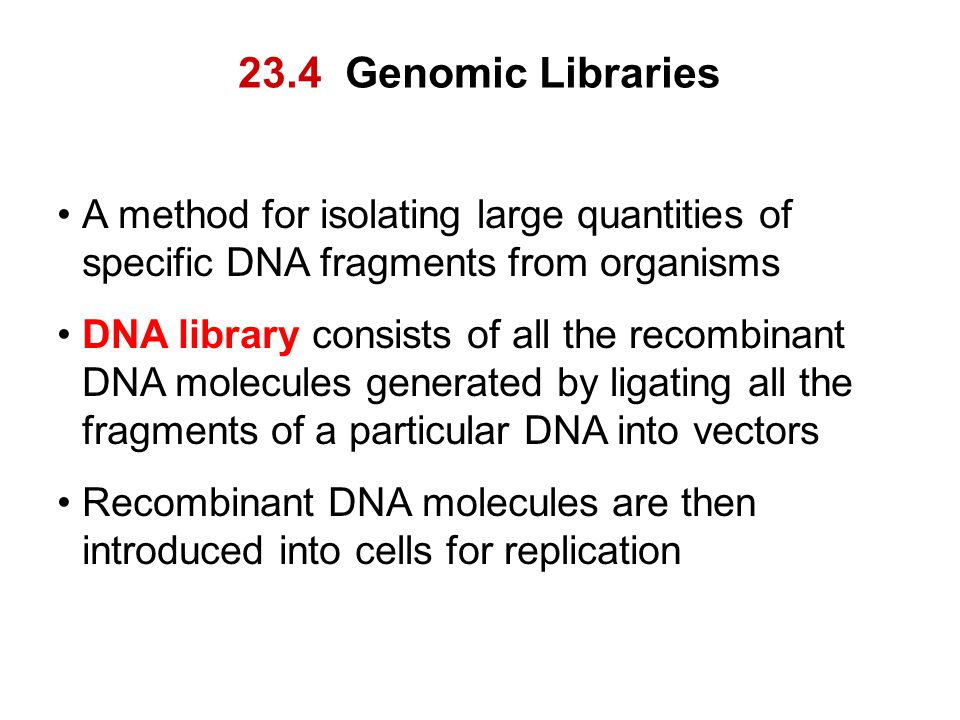 23.4 Genomic Libraries A method for isolating large quantities of specific DNA fragments from organisms DNA library consists of all the recombinant DN