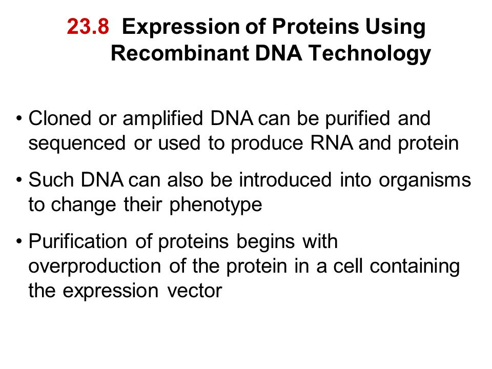 23.8 Expression of Proteins Using Recombinant DNA Technology Cloned or amplified DNA can be purified and sequenced or used to produce RNA and protein