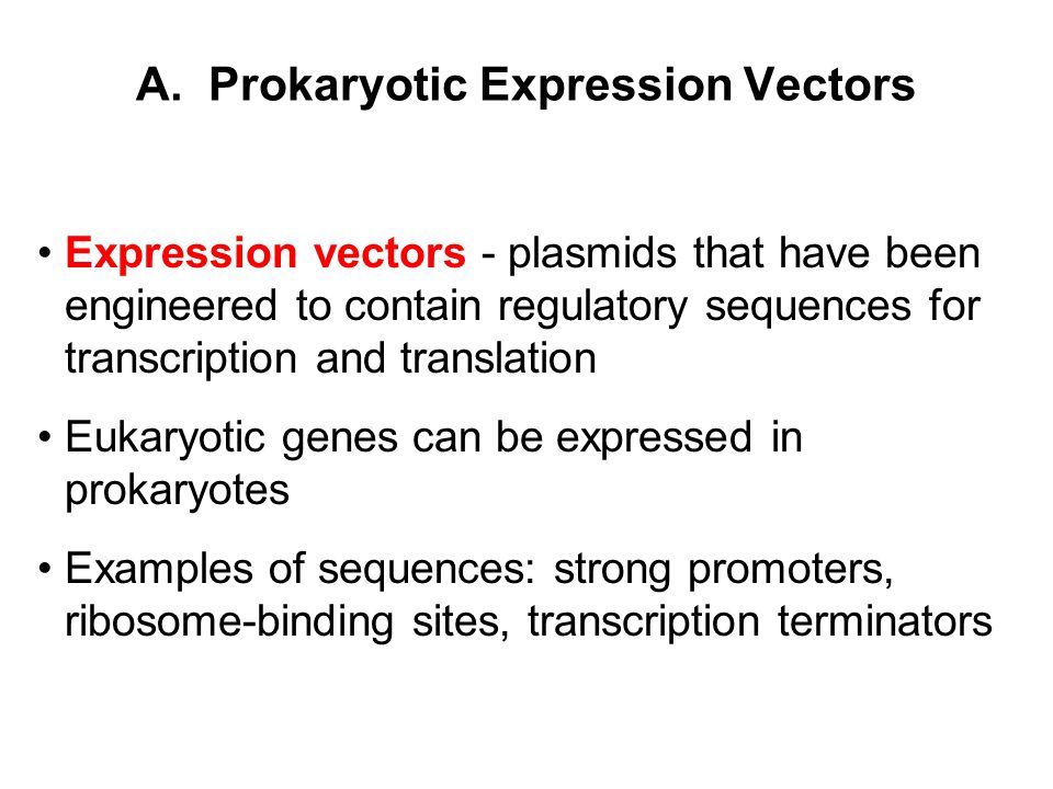 A. Prokaryotic Expression Vectors Expression vectors - plasmids that have been engineered to contain regulatory sequences for transcription and transl