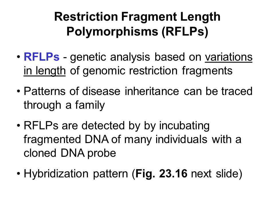 Restriction Fragment Length Polymorphisms (RFLPs) RFLPs - genetic analysis based on variations in length of genomic restriction fragments Patterns of