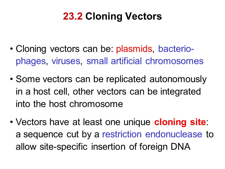 23.2 Cloning Vectors Cloning vectors can be: plasmids, bacterio- phages, viruses, small artificial chromosomes Some vectors can be replicated autonomo