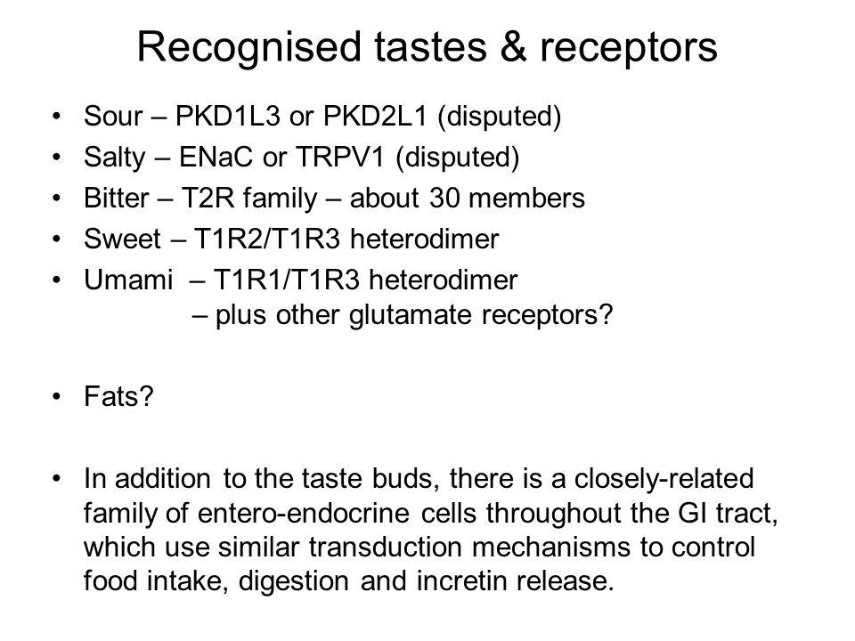 Recognised tastes & receptors Sour – PKD1L3 or PKD2L1 (disputed) Salty – ENaC or TRPV1 (disputed) Bitter – T2R family – about 30 members Sweet – T1R2/T1R3 heterodimer Umami – T1R1/T1R3 heterodimer – plus other glutamate receptors.