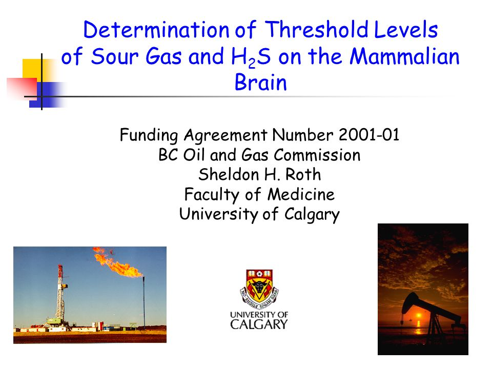 Determination of Threshold Levels of Sour Gas and H 2 S on the Mammalian Brain Funding Agreement Number 2001-01 BC Oil and Gas Commission Sheldon H.