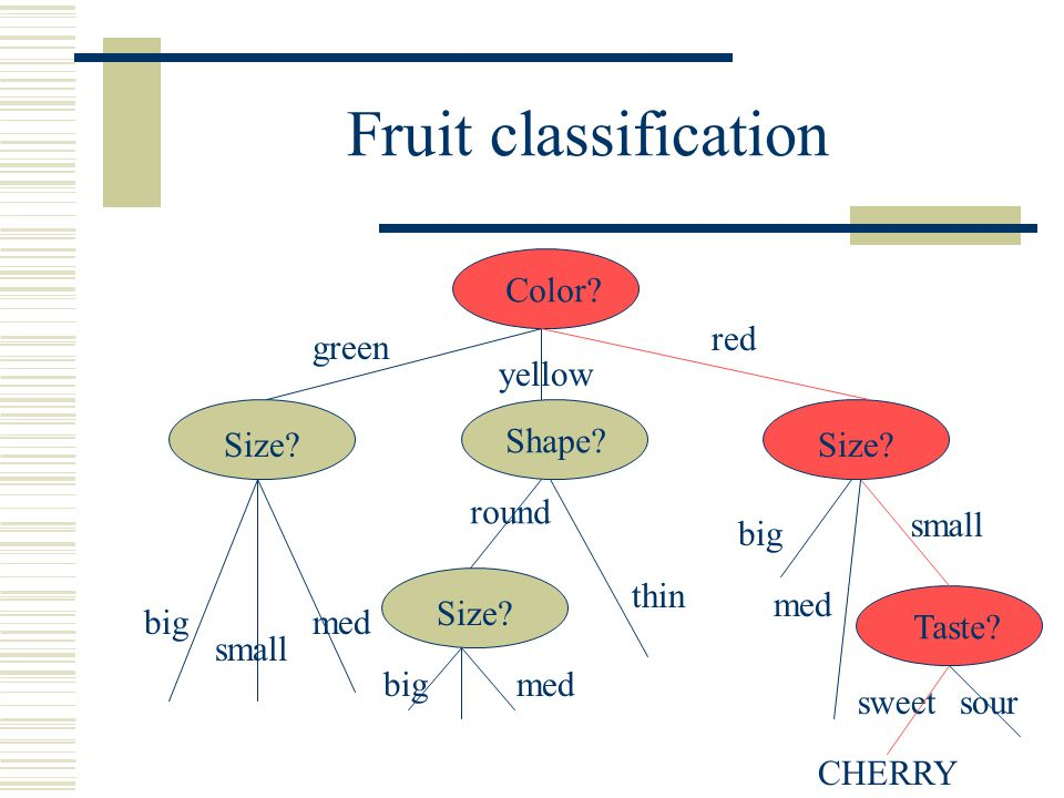 Fruit classification Color? green yellow red Size? Shape? Size? Taste? bigmed round thin big small med big small med sweetsour CHERRY