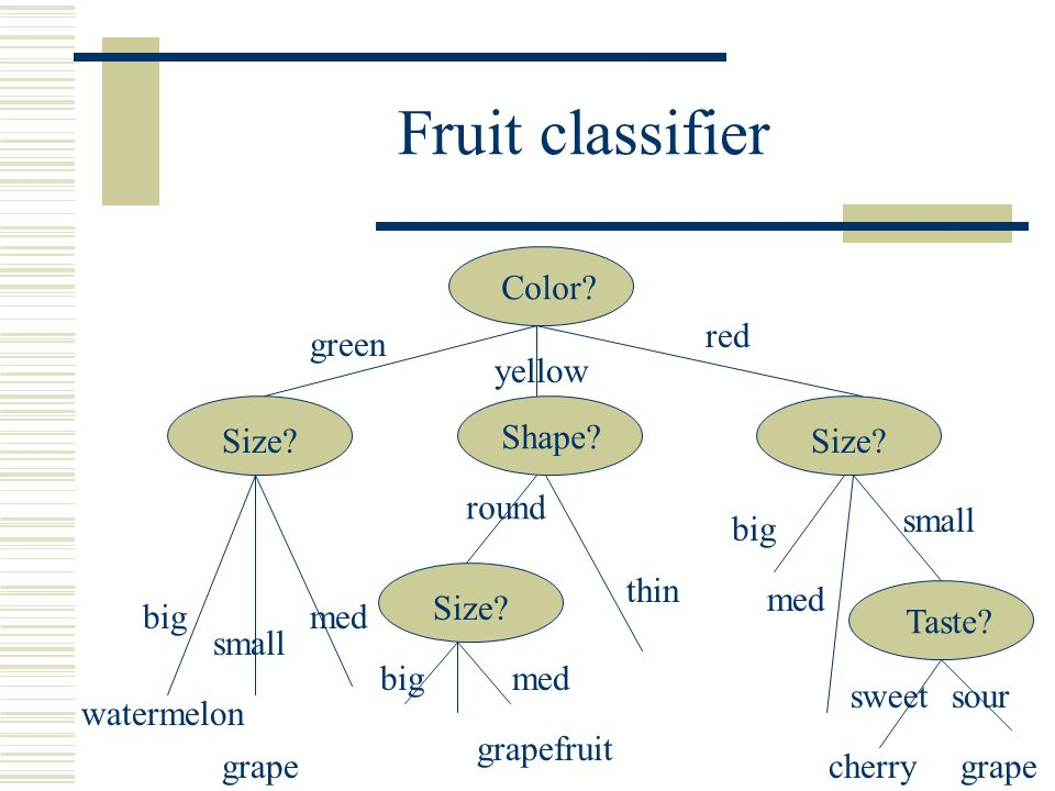 Fruit classifier Color? green yellow red Size? Shape? Size? Taste? bigmed round thin big small med big small med sweetsour watermelon grape grapefruit