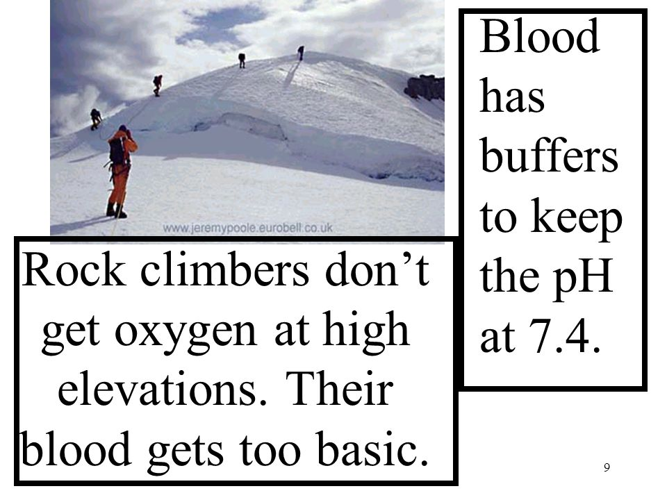9 Rock climbers don't get oxygen at high elevations.
