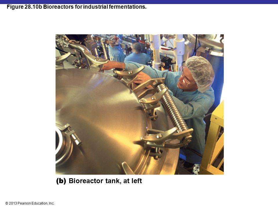 © 2013 Pearson Education, Inc. Figure 28.10b Bioreactors for industrial fermentations. Bioreactor tank, at left