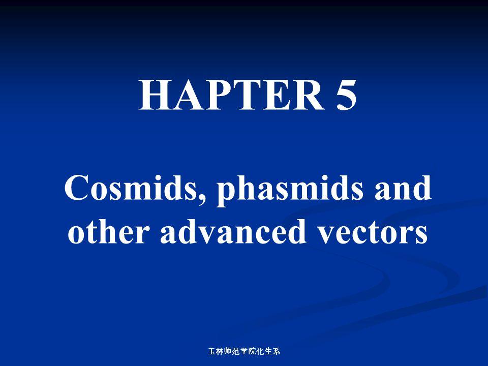玉林师范学院化生系 HAPTER 5 Cosmids, phasmids and other advanced vectors