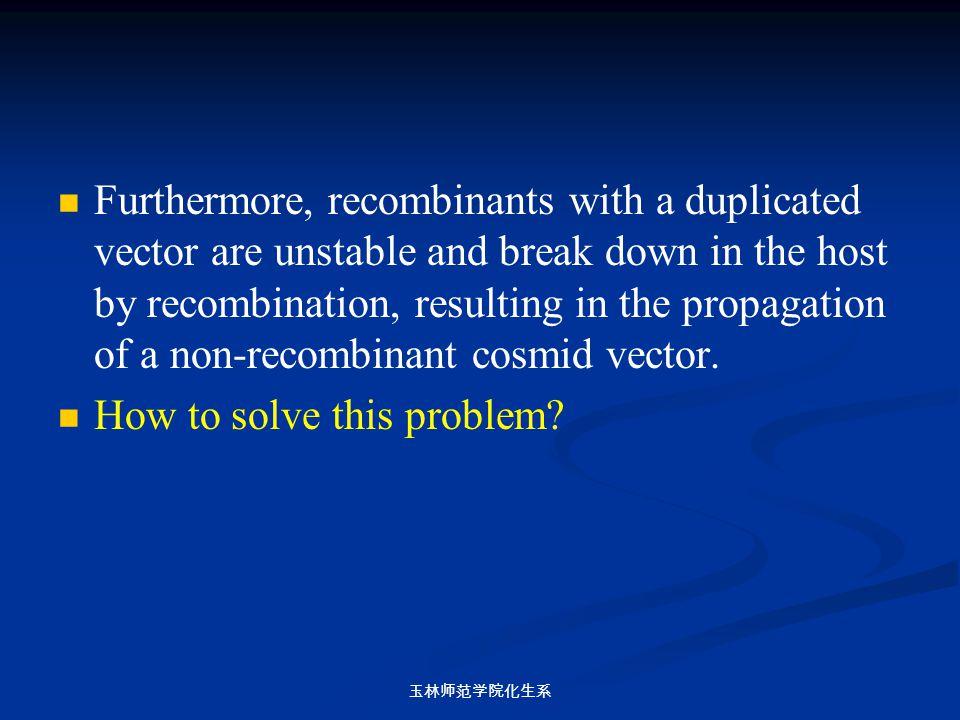 玉林师范学院化生系 Furthermore, recombinants with a duplicated vector are unstable and break down in the host by recombination, resulting in the propagation of