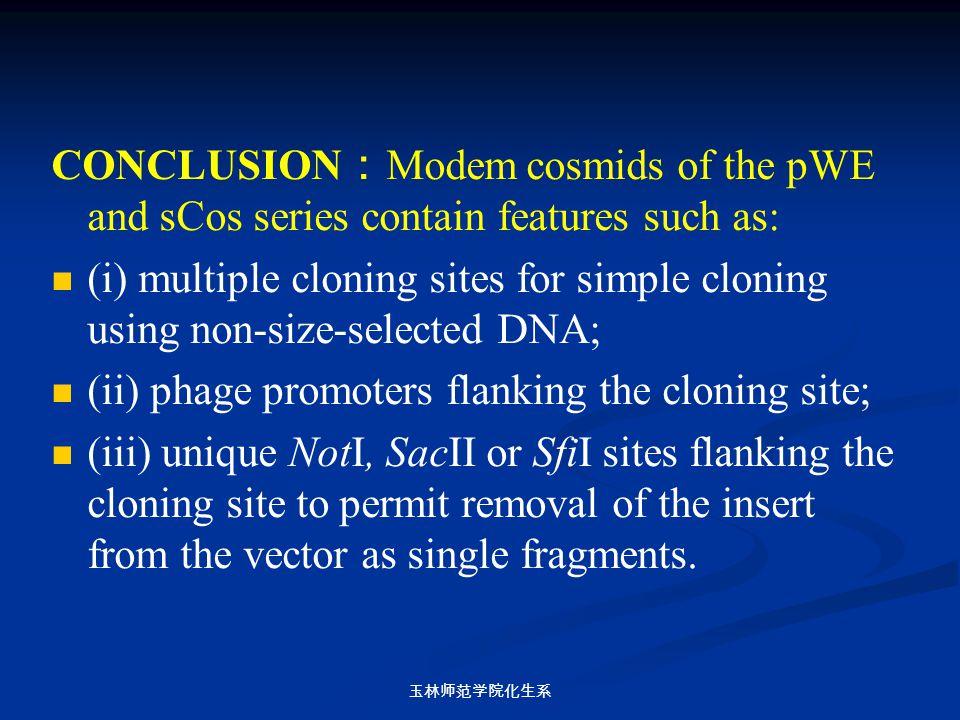 玉林师范学院化生系 CONCLUSION : Modem cosmids of the pWE and sCos series contain features such as: (i) multiple cloning sites for simple cloning using non-size