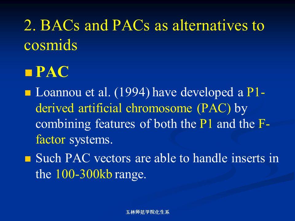 玉林师范学院化生系 2. BACs and PACs as alternatives to cosmids PAC Loannou et al. (1994) have developed a P1- derived artificial chromosome (PAC) by combining
