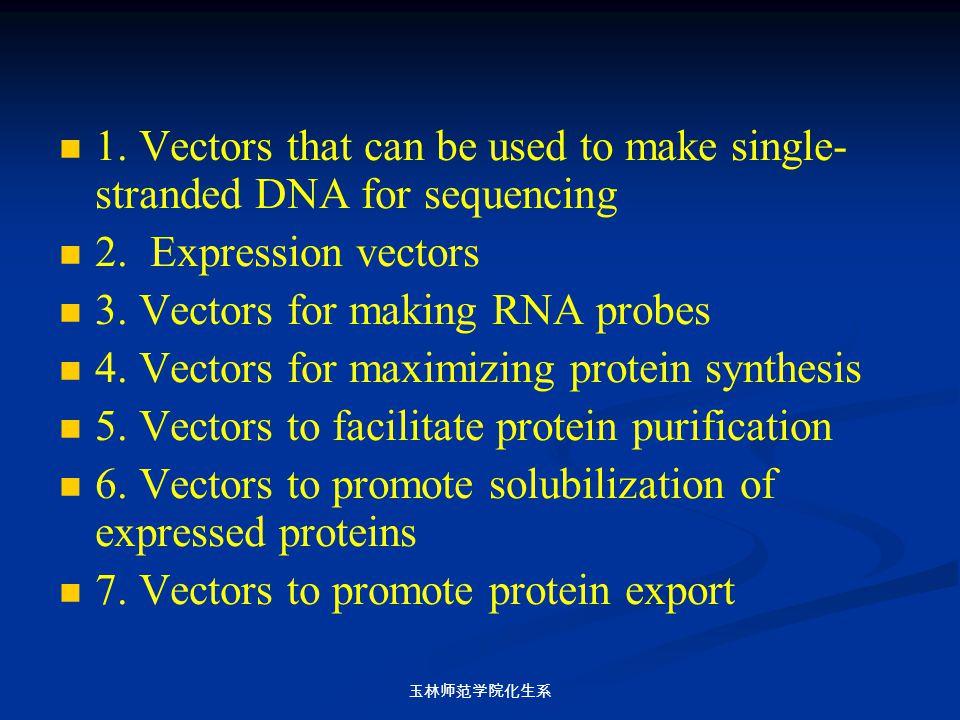 玉林师范学院化生系 1. Vectors that can be used to make single- stranded DNA for sequencing 2. Expression vectors 3. Vectors for making RNA probes 4. Vectors fo