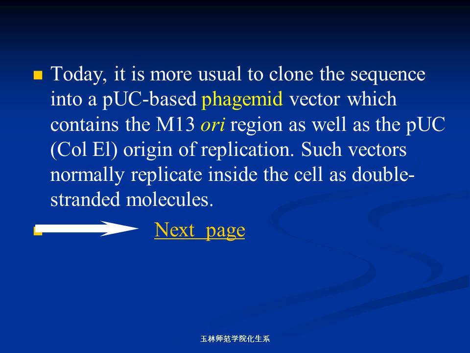 玉林师范学院化生系 Today, it is more usual to clone the sequence into a pUC-based phagemid vector which contains the M13 ori region as well as the pUC (Col El)
