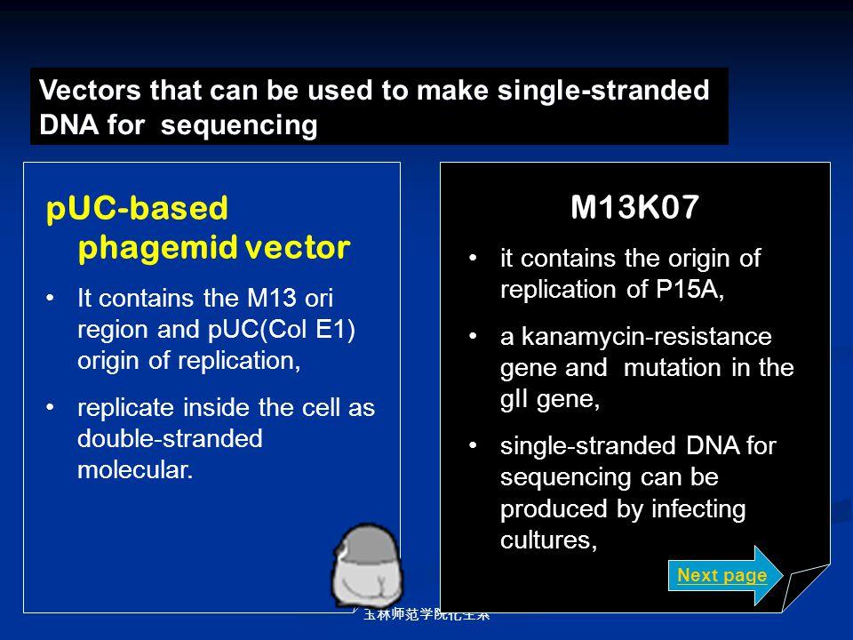 玉林师范学院化生系 Vectors that can be used to make single-stranded DNA for sequencing pUC-based phagemid vector It contains the M13 ori region and pUC(Col E1)