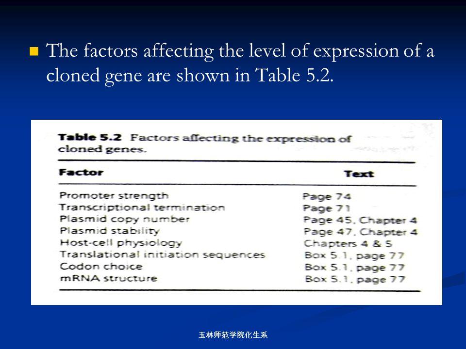 玉林师范学院化生系 The factors affecting the level of expression of a cloned gene are shown in Table 5.2.