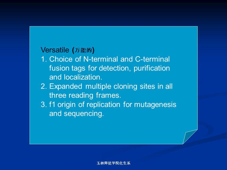玉林师范学院化生系 Versatile ( 万能的 ) 1.Choice of N-terminal and C-terminal fusion tags for detection, purification and localization. 2.Expanded multiple clonin