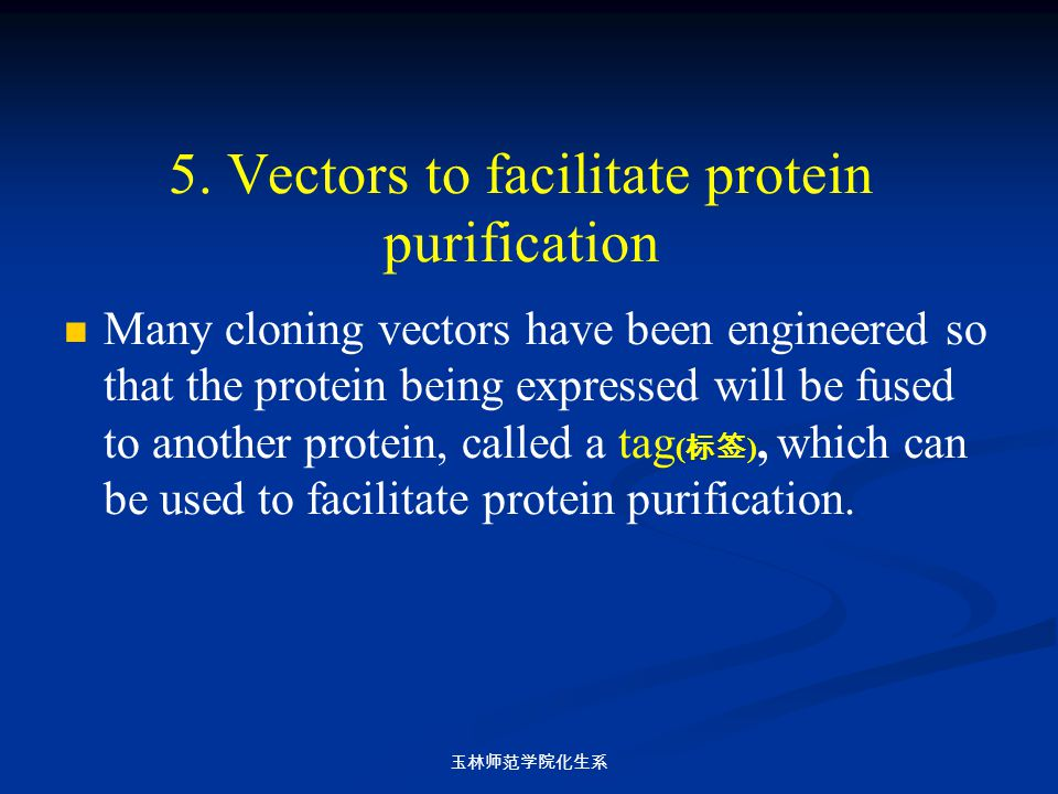 5. Vectors to facilitate protein purification Many cloning vectors have been engineered so that the protein being expressed will be fused to another p