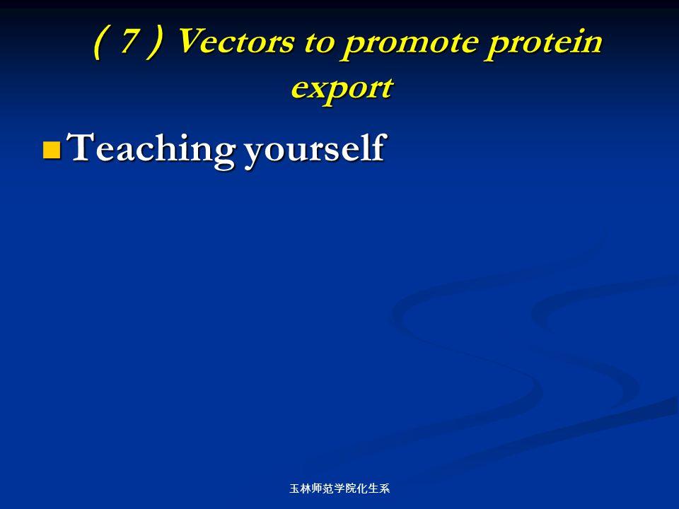玉林师范学院化生系 ( 7 ) Vectors to promote protein export Teaching yourself Teaching yourself