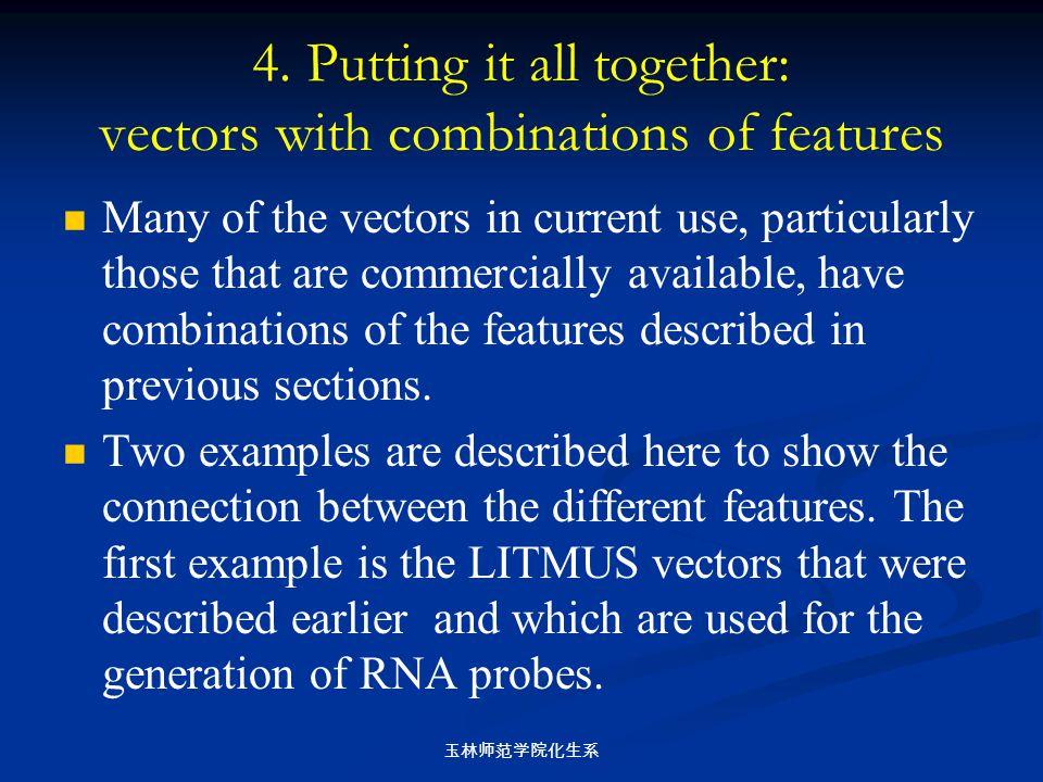 玉林师范学院化生系 4. Putting it all together: vectors with combinations of features Many of the vectors in current use, particularly those that are commercial