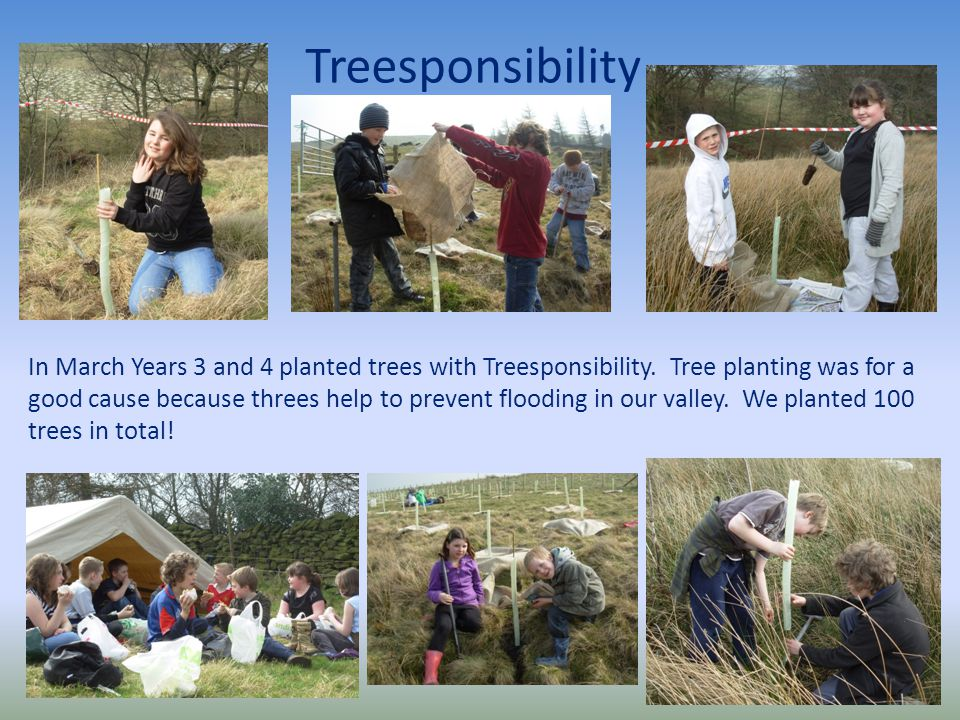 Treesponsibility In March Years 3 and 4 planted trees with Treesponsibility.